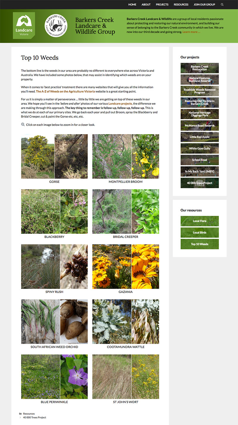 Screenshot of Barkers Creek Landcare website top ten weeds page